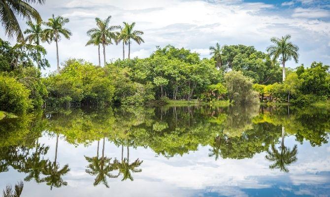 Fairchild Tropical Botanic Garden Miami