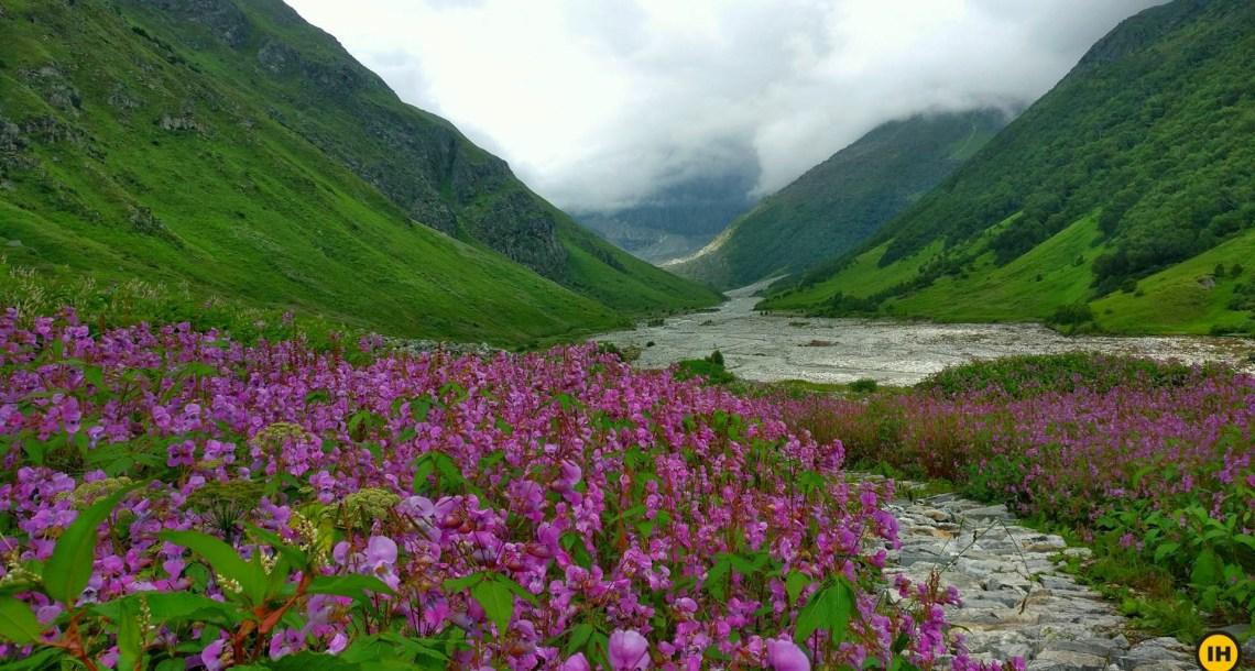 Valley of Flowers tourism spots in Uttarakhand