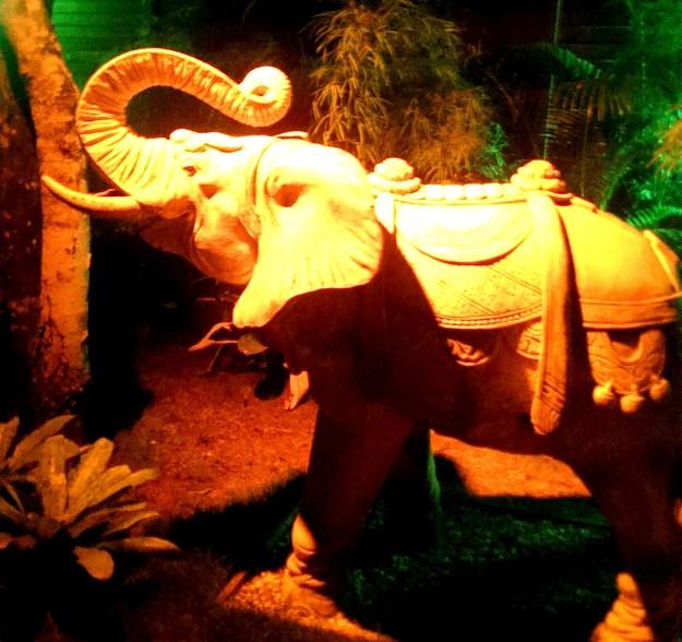 Warung elephant