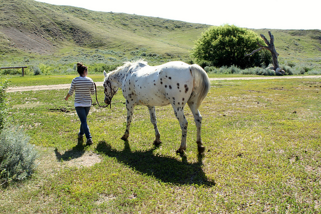 Me and Gus at La Reata Ranch