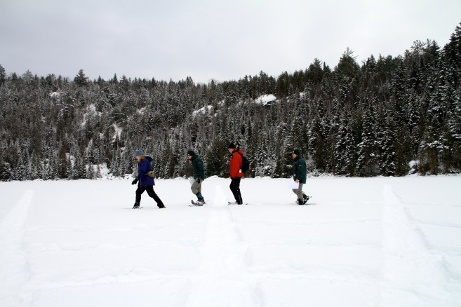 Snow tagging in Mauricie National Park