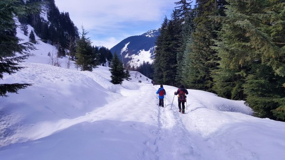 Easy Hike to Frozen Franklin Falls