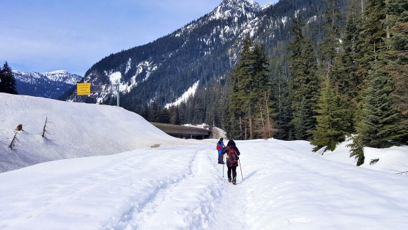 Walking on NF-58 . This road is closed in Winter for Vehicles. Easy hike to Franklin Falls near Snoqualmie Pass. Seattle.