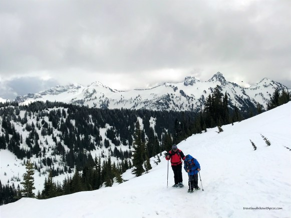Snow covered On Alta vista trail at Mount Rainier National park