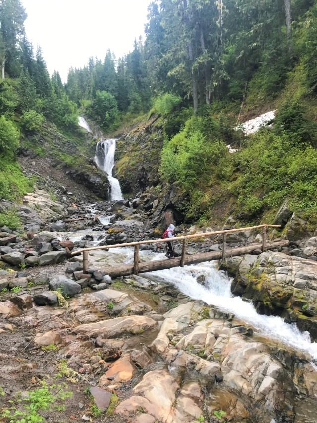 Log Bridge across stream at Bloucher Falls