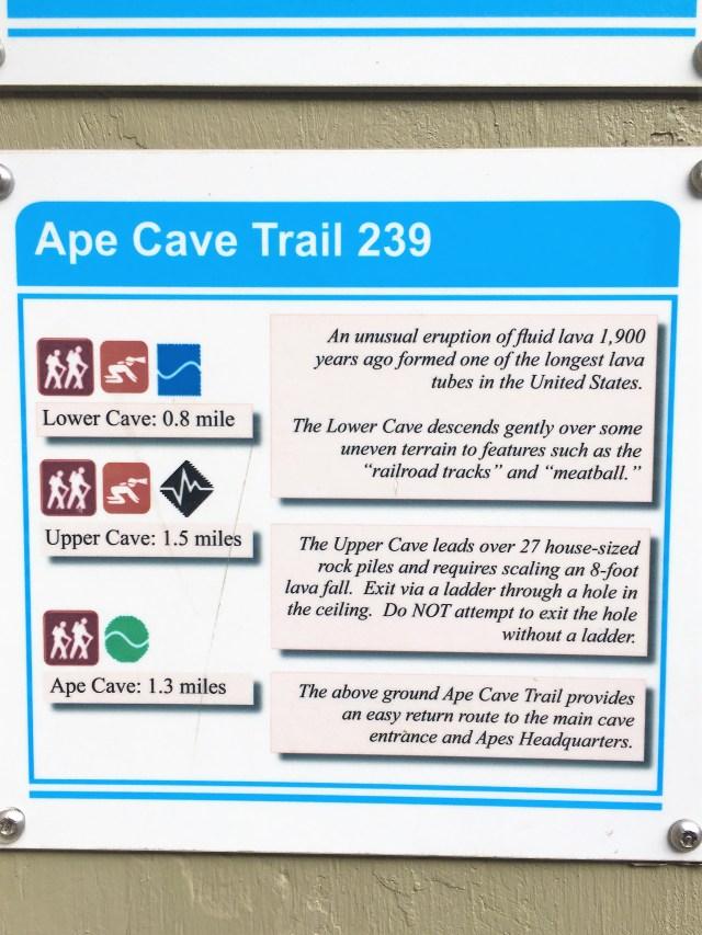 Ape Cave Trail 239 Board