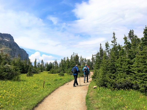 Alpine Meadows bloomed with colorful wildflowers at Highline trail Glacier National Park