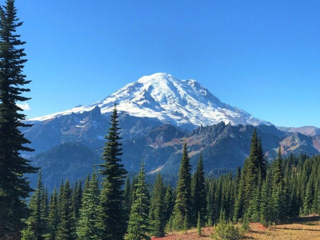 View of Mount Rainier from Naches Peak Loop Trail