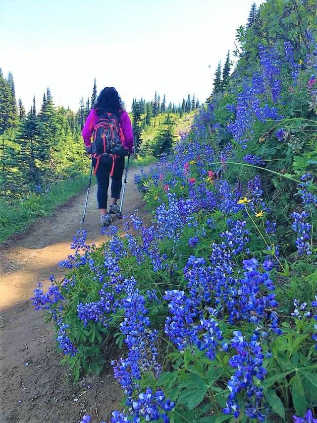 Hike to Naches Peak Loop Trail Mount Rainier