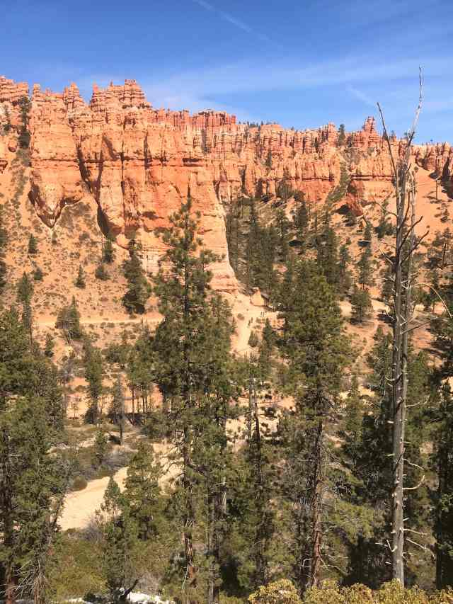 View of Queen's Garden Trail from Peek-A-Boo Loop Trail (can you see tiny hikers near the trees on trail). Best Hikes in Bryce Canyon National Park.