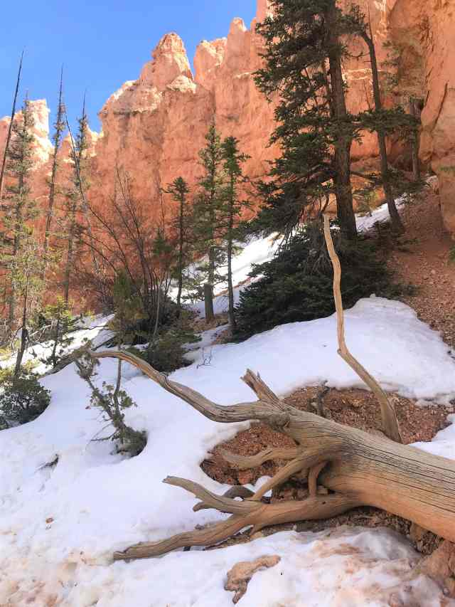 Snow Patches on Peek-A-Boo Loop Trail