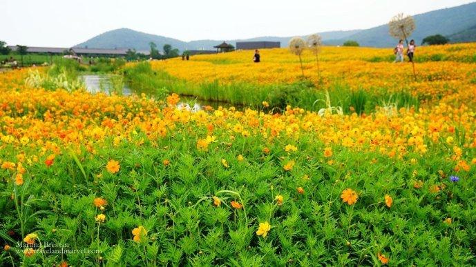 Taihu lake Huanhua Bay 灵山小镇拈花.
