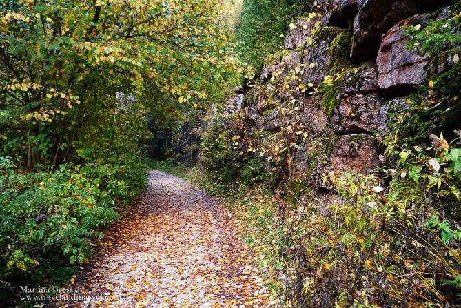 foreste del Barenthal- escursioni da fare ad Asiago