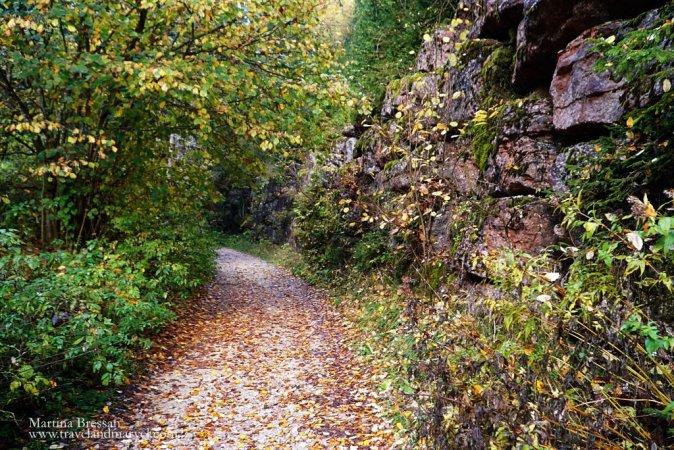 Foreste del Barenthal: formazioni rocciose di rosso ammonitico