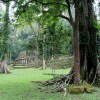 Mayan Ruins of Yaxchilan & Bonampak