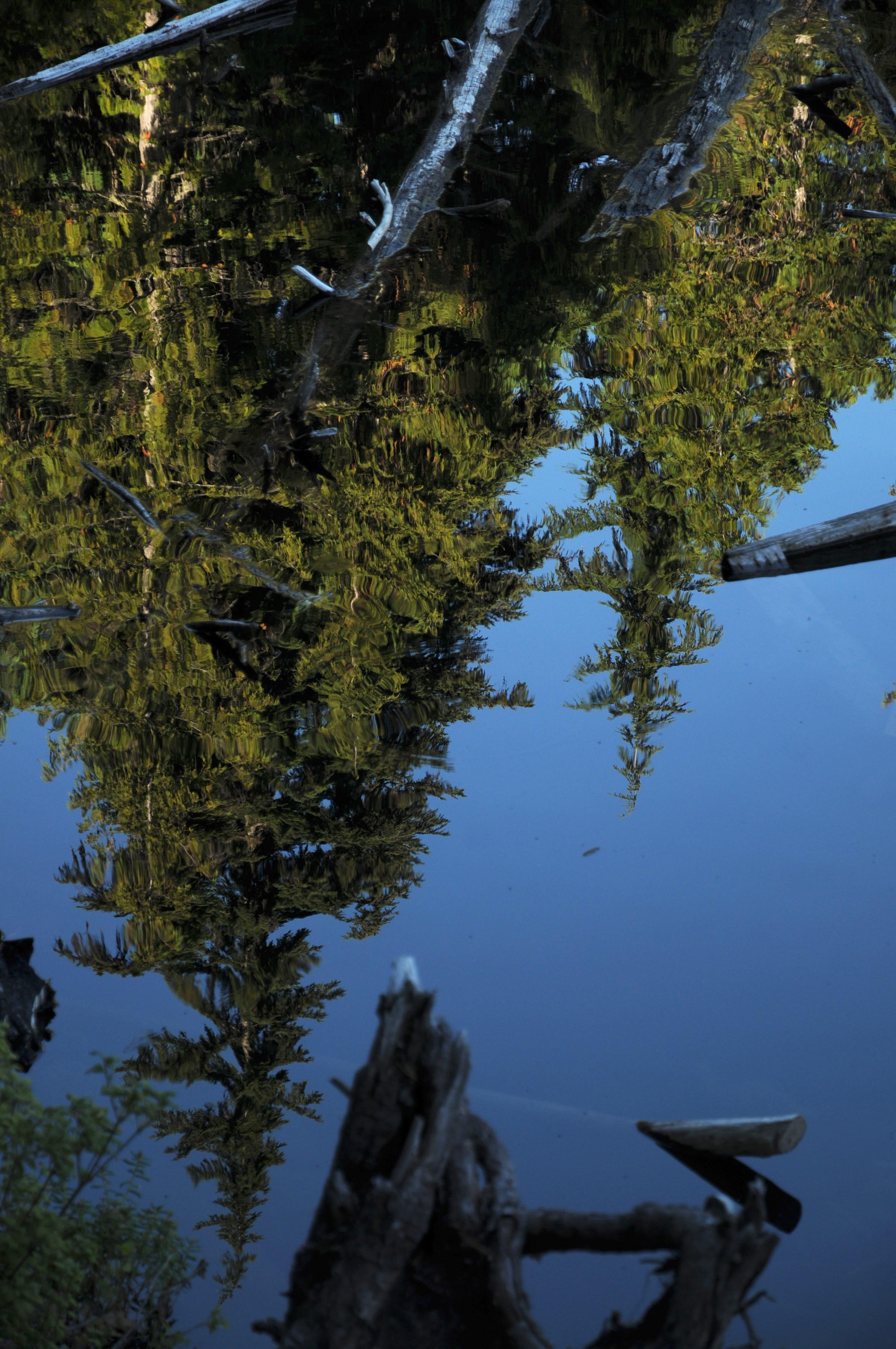 Logger's Lake & Crater Rim Trail