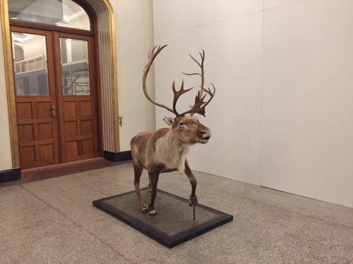 Historical Museum Oslo