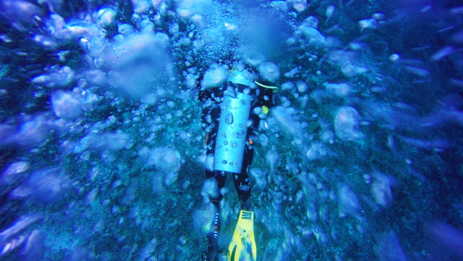 Palawan Divers