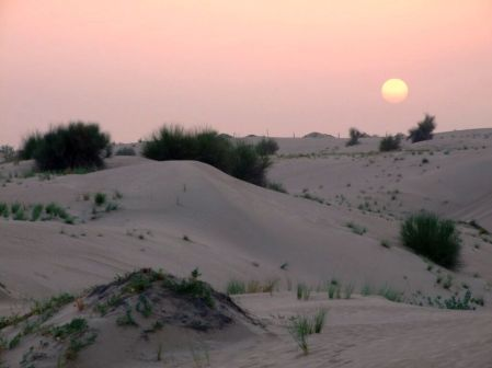 Emirate - apus de soare în deşert