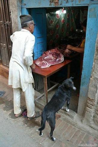 Pe o stradă lăturalnică din Kathmandu