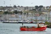O barcă intră în port ...