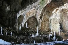 Peştera Liliecilor din satul Peştera, culoarul Rucăr-Bran