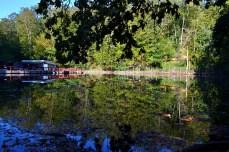 Lacul Aluniș, Sovata