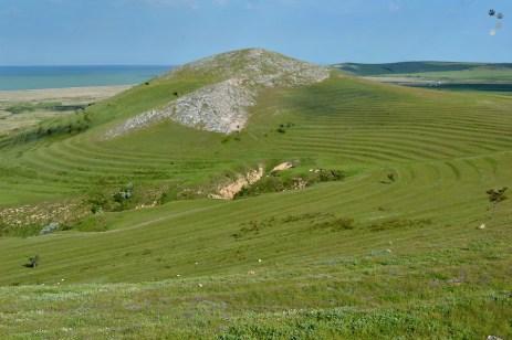 Dealurile Dobrogei