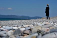 Pefki, insula Evia