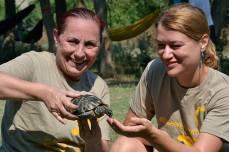 La o șuetă cu Testudo Graeca în tabăra de biodiversitate din Dobrogea