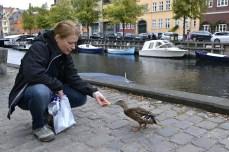Hrănind rațele în Christianshavn, Copenhaga