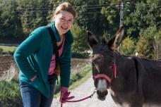 Cum am plimbat măgaru' în Italia