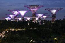 Baobabi de Singapore
