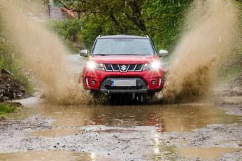 Suzuki action