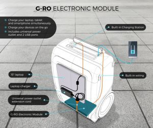 G-RO Electronic Module