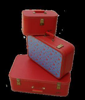 Vintage Modular Travel Cases