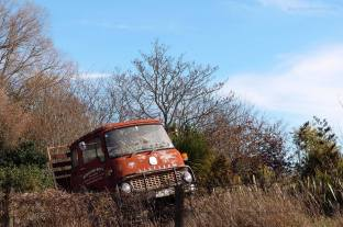 An abandoned truck that caught my attention.