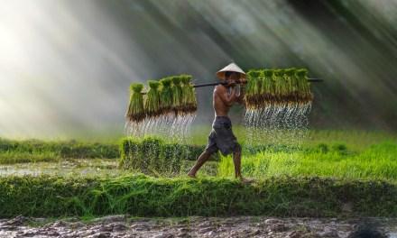 Les lieux à ne pas rater dans le Nord du Vietnam