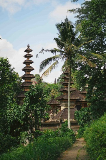 Get loose In Ubud 04