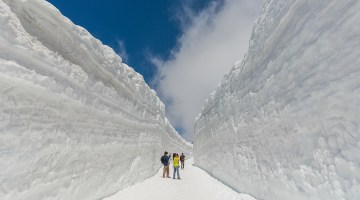 cover-snow-wall