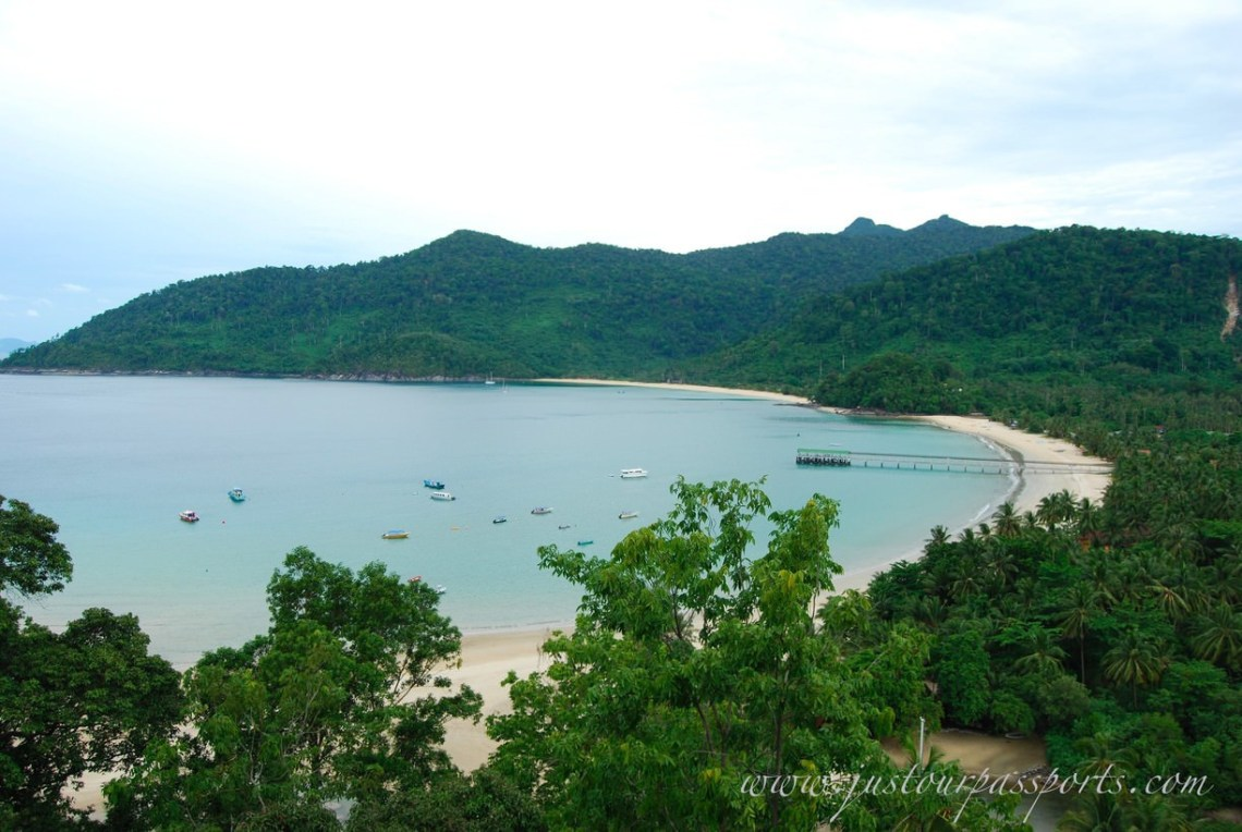 aerial view of island beach with trees