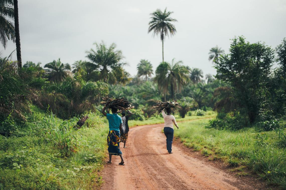three people carrying wood along dirt road