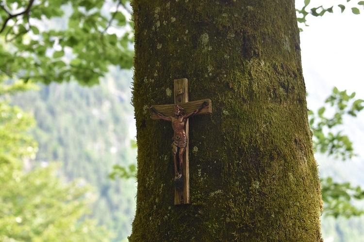 Crucifix on tree