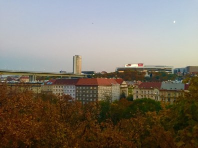 view_1