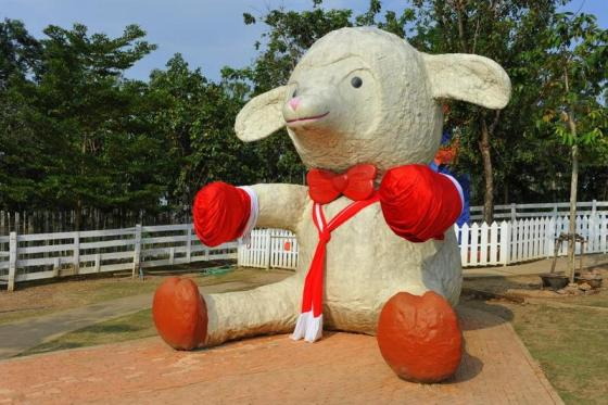 Hug You Sheep Farm in Lampang, northern Thailand