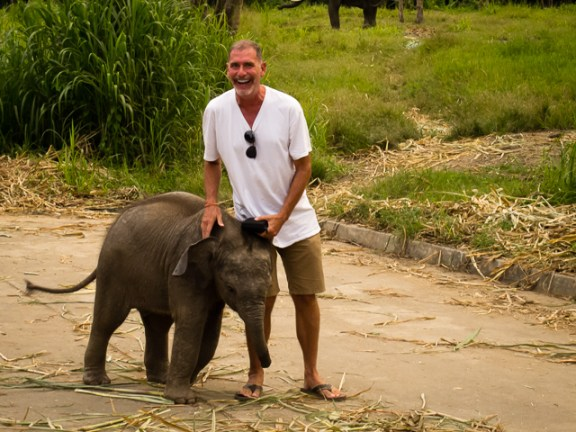 Jonathan Look-Being Attacked by a Baby Elephant in Thailand