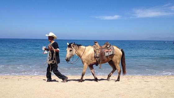 Just an ordinary day at the beach in Puerta Vallarta