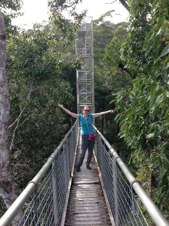 Exploring the rainforest in Brunei with Sharon Gourlay of Wheres Sharon