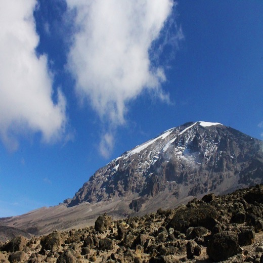Kilimanjaro picture from RoarLoud