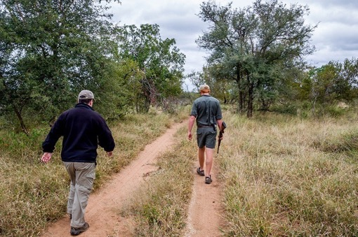 Walking through the bush with wild animals was a whole different level of adventure! With the Travel Addicts